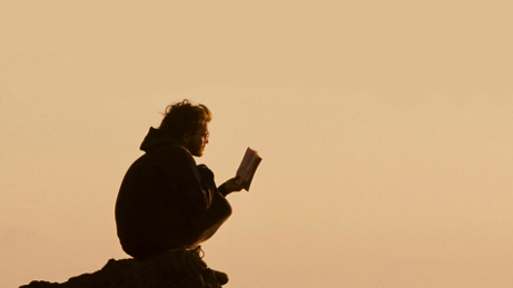 Into the wild - reading